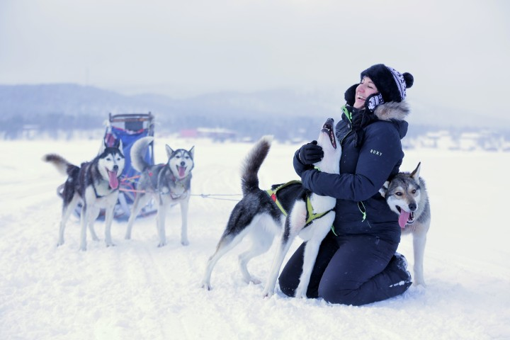 Nordic Photo of the Month - Husky Tour in the Wilderness of Lapland - Olga Turilova