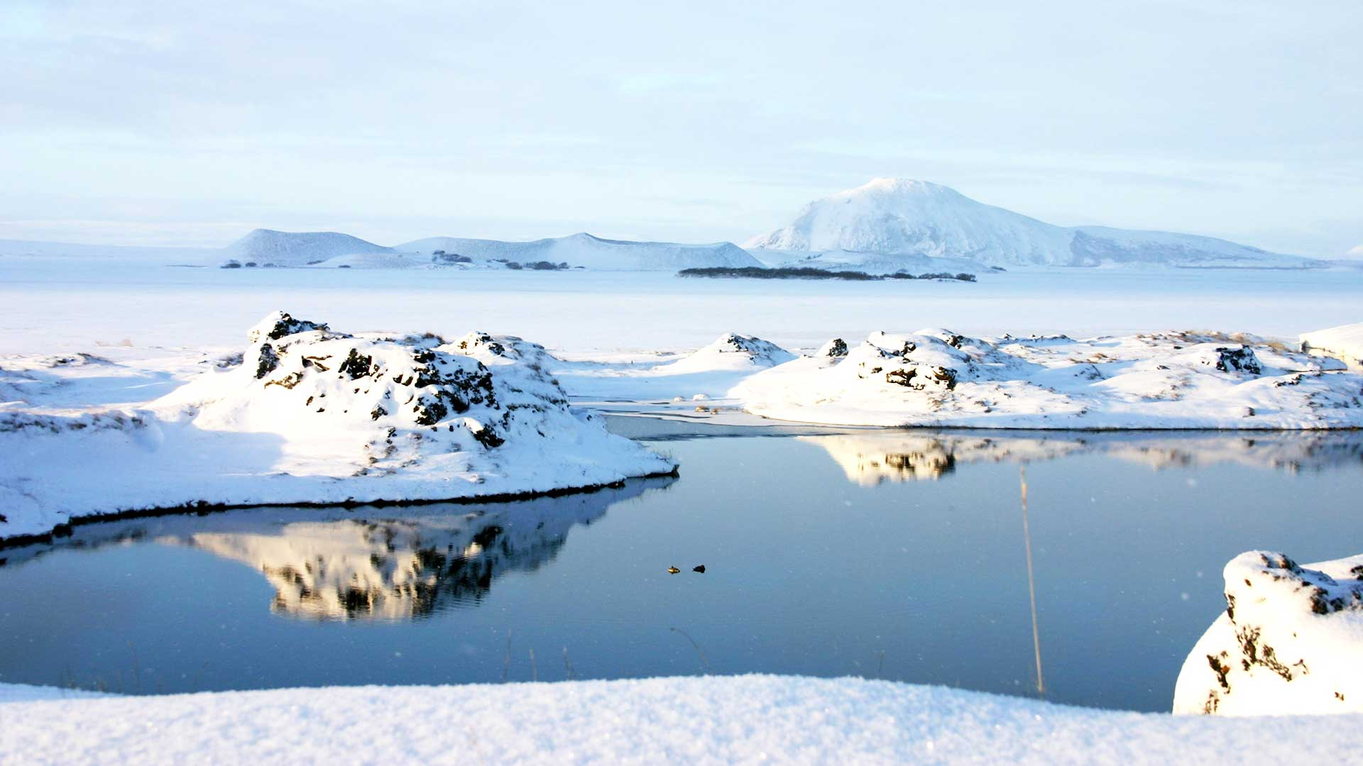 Iceland Winter Nature Tours