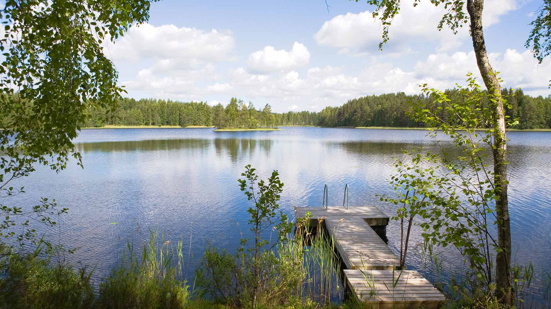 Lake in Finland in summer
