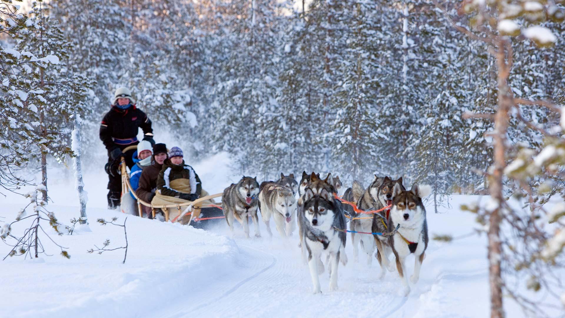 new year u0027s adventure in finnish lapland 4 days 3 nights nordic