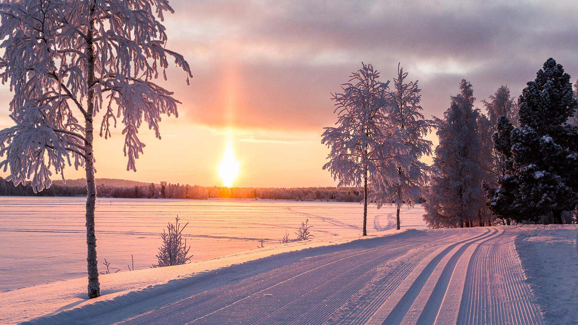 The Best Of Lapland 5 Days 4 Nights Nordic Visitor