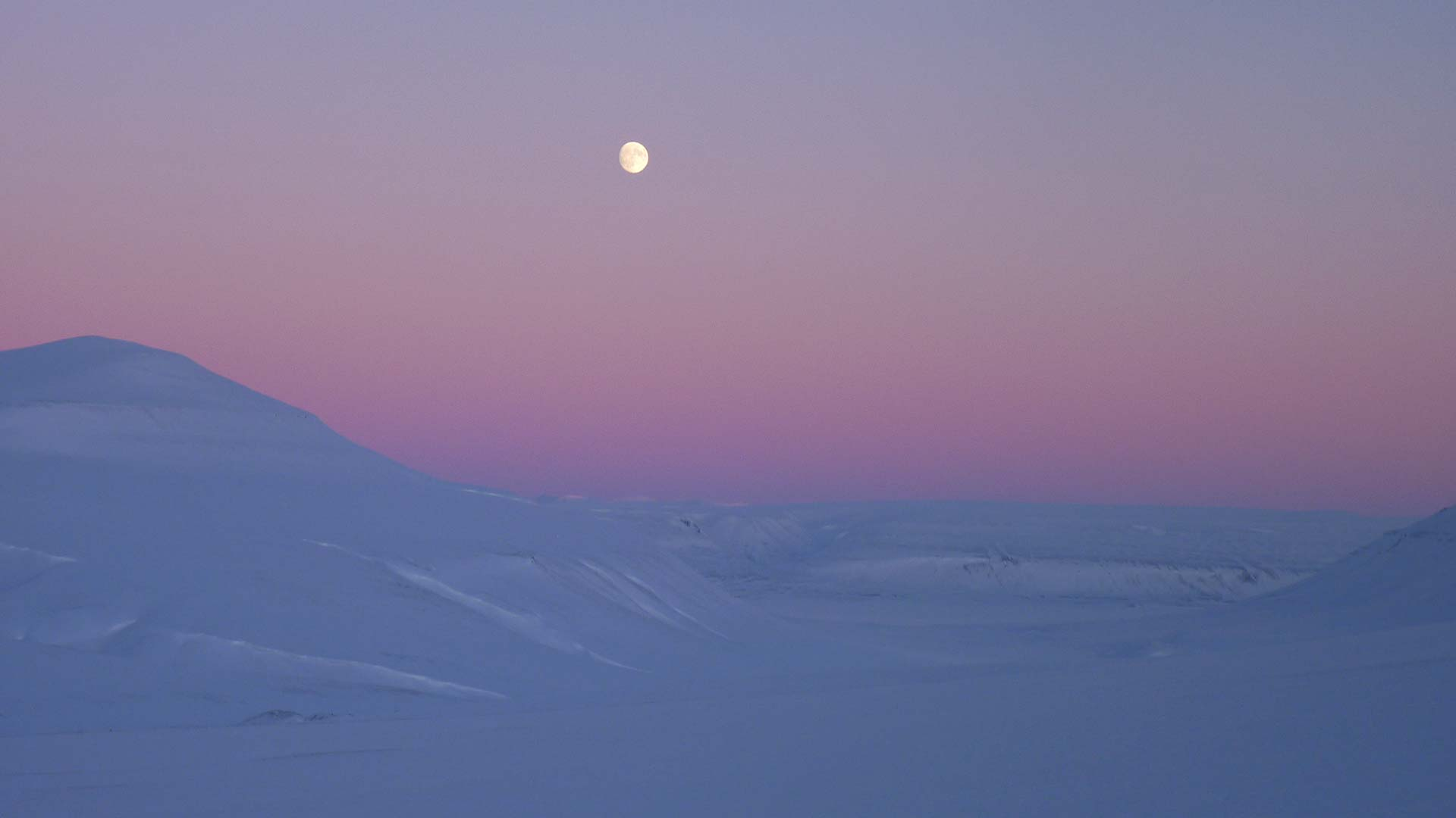 So You Want to Go to Svalbard? : Travel Advice : Nordic Visitor