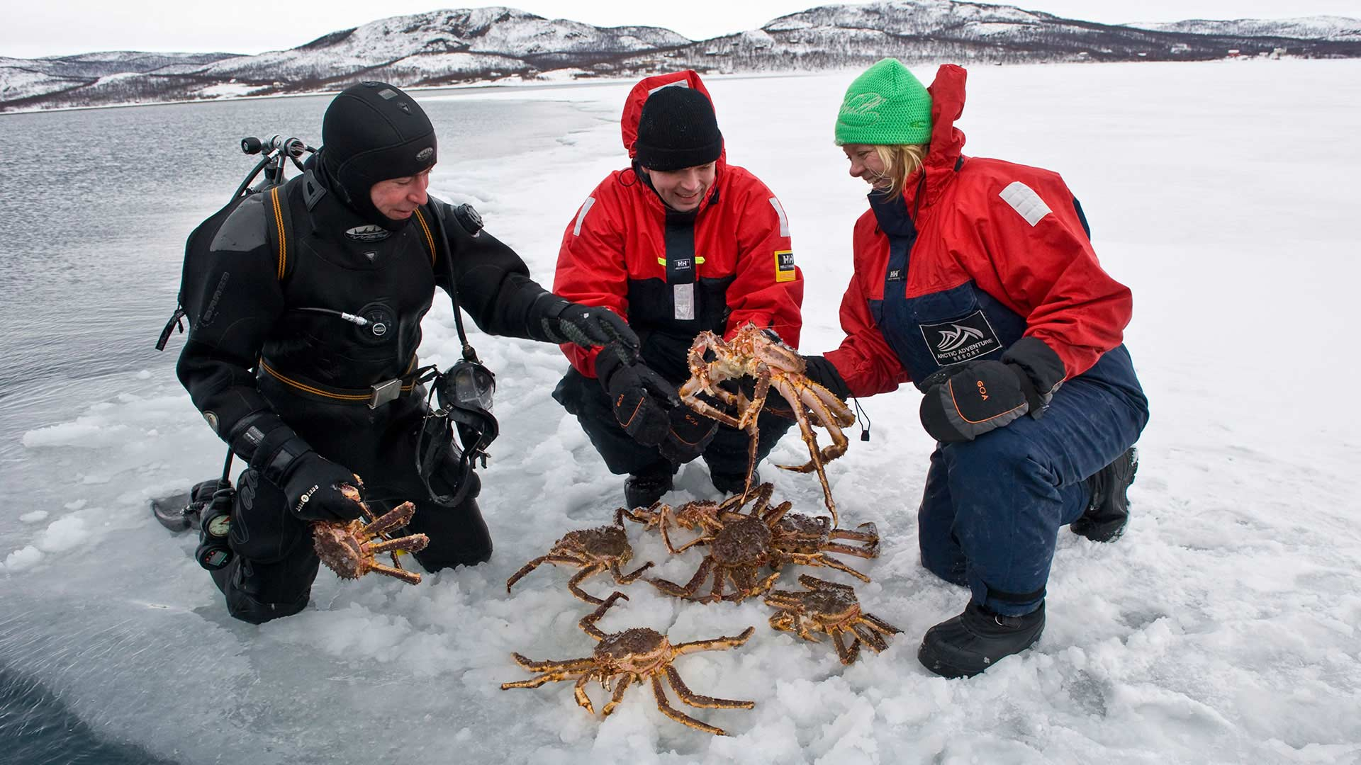 King Crab Safari in Kirkenes, Norway - Photo: visitnorway.com/Terje Rakke