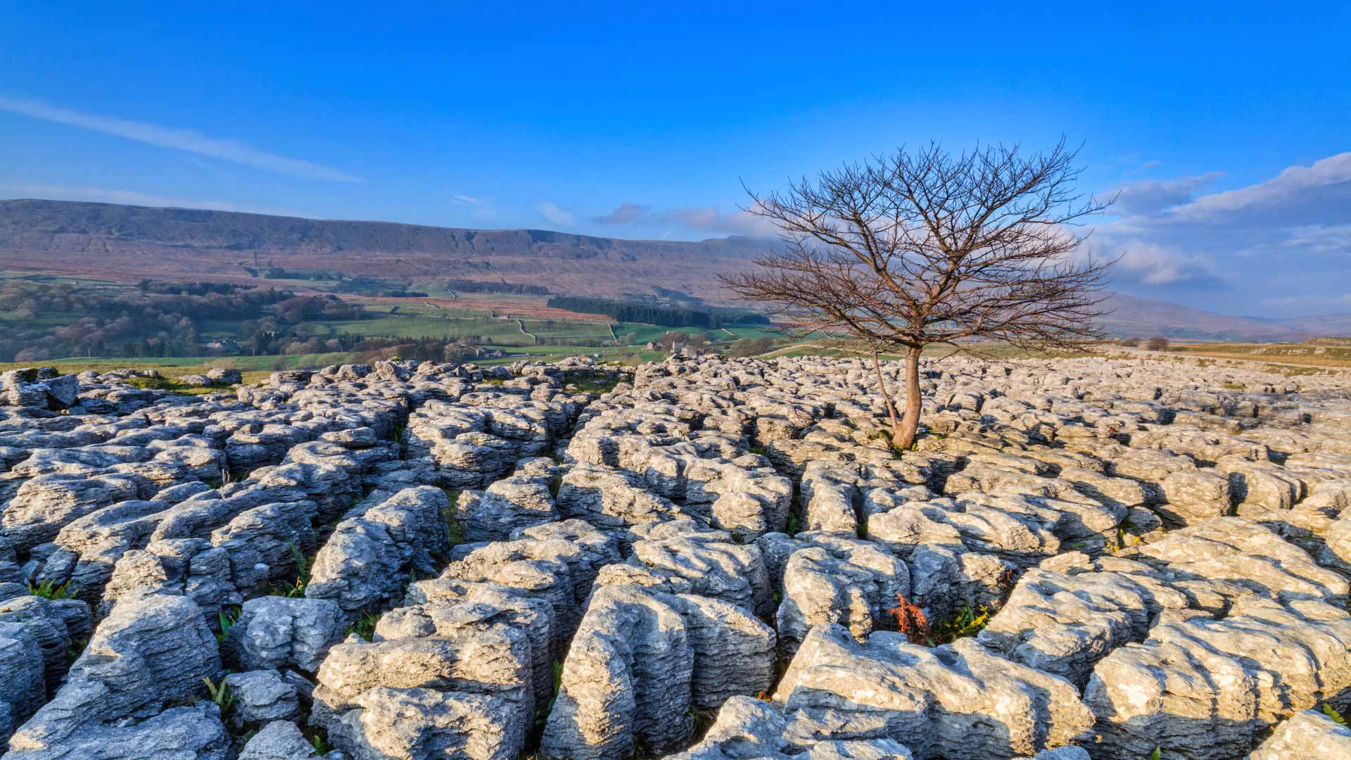 Limestone pavement at Yorkshire Dales National Park, England - creditchris2766