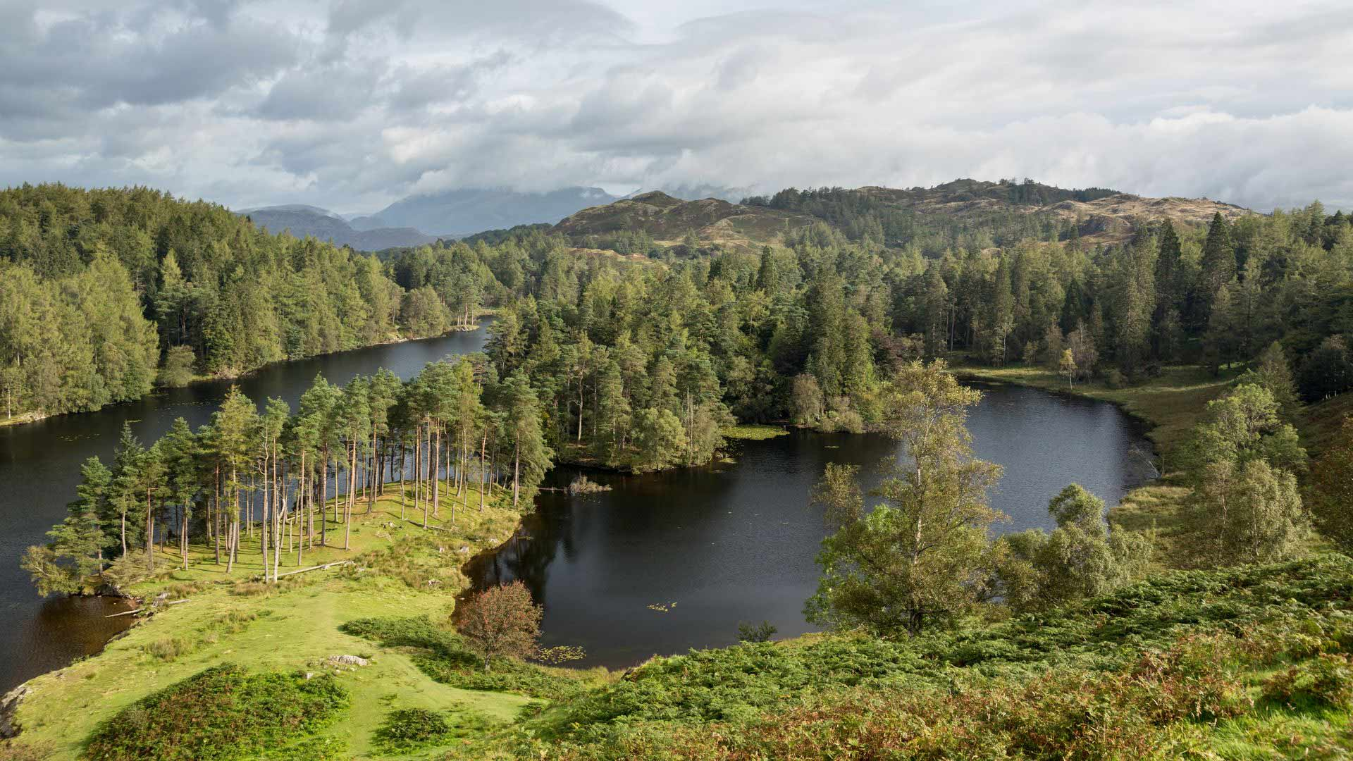 Tarn Hows, Lake District, Northern England