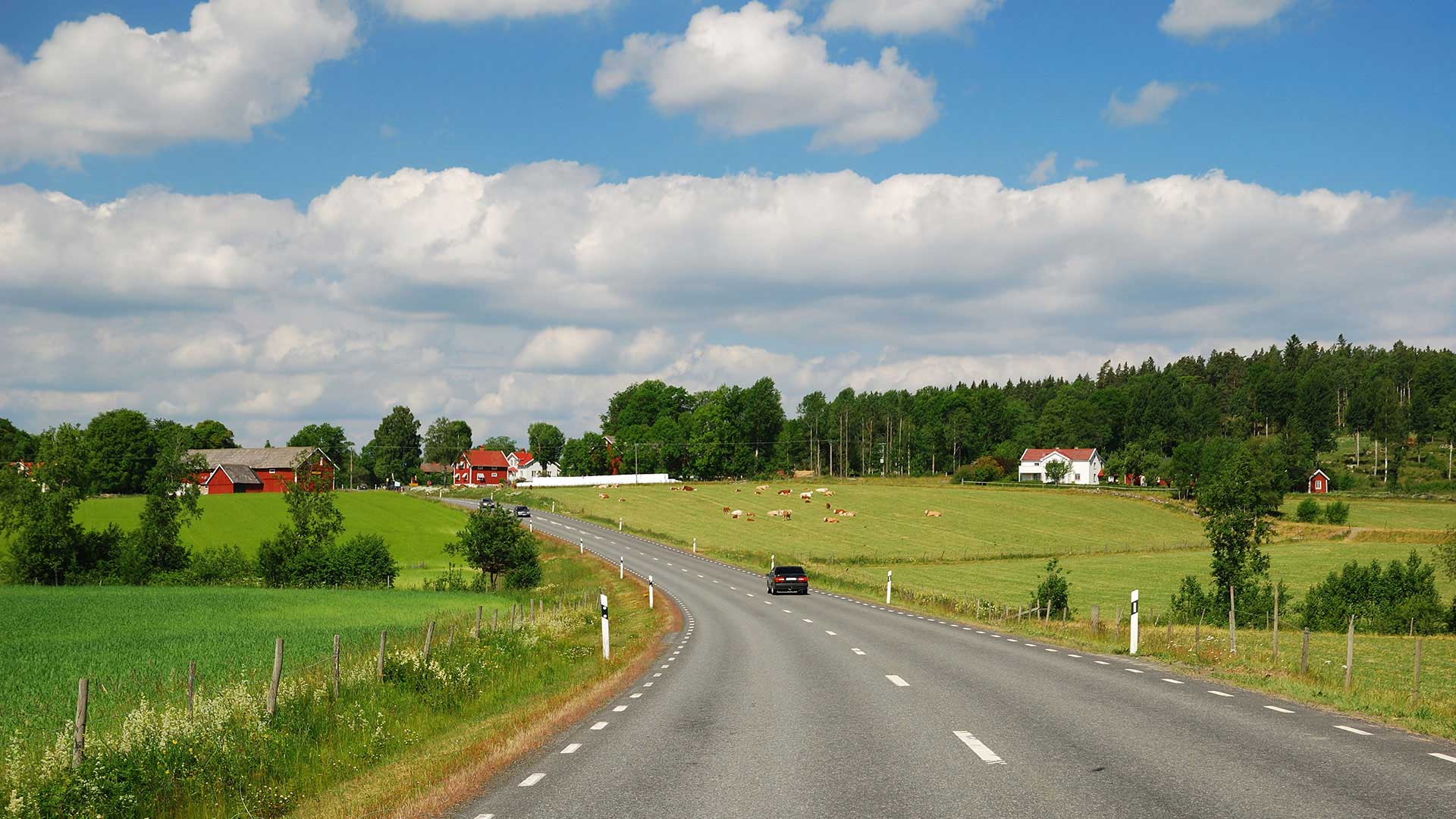 road through swedish countryside