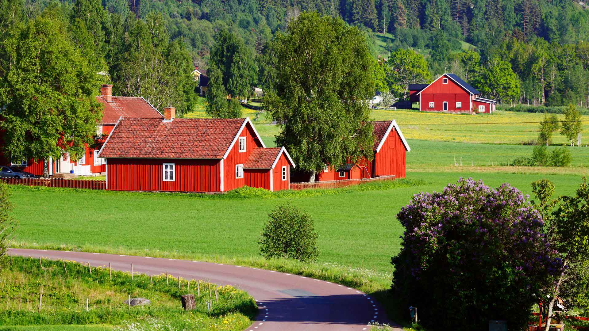 Pretty Swedish countryside